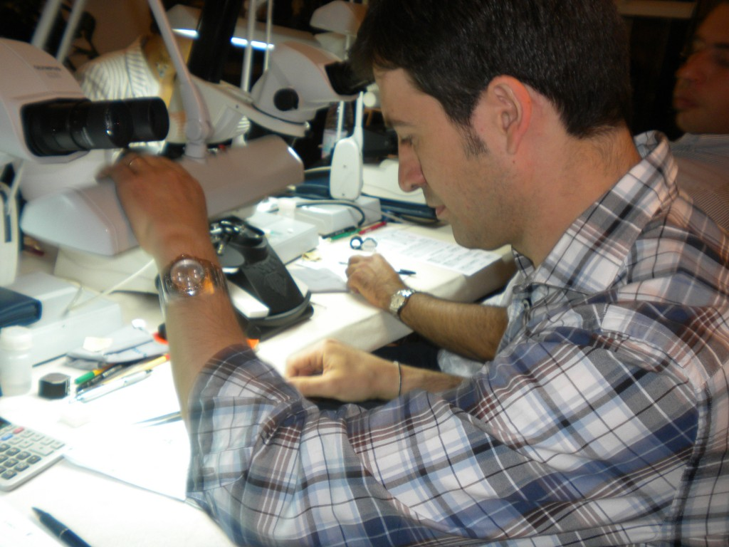 Certified Diamond Grader | Rome, Italy