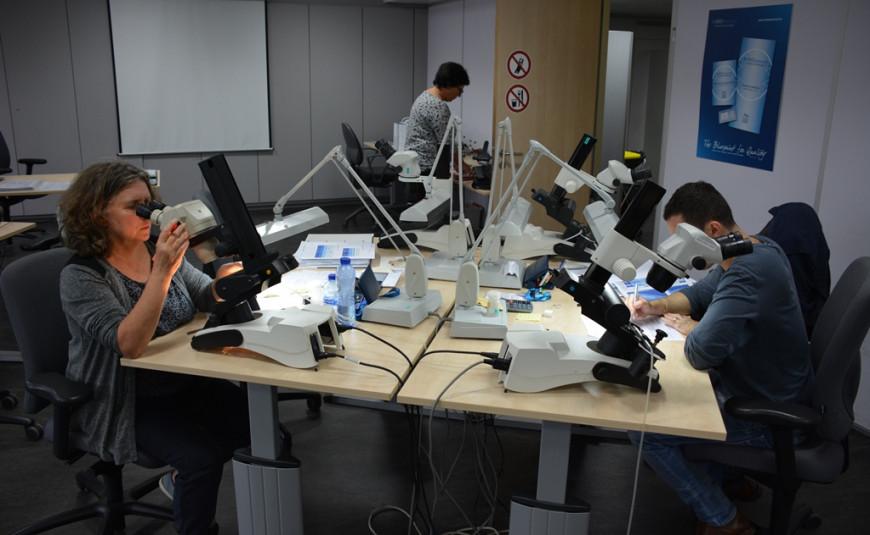Diamond Grading Practice Week (PDG1802)